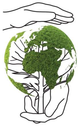 """Il lavoro diventa sostenibile, con il metodo """"Lean & Green"""": organizzazione e ambiente sono i pilastri di un'azienda di successo"""